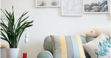 Stylish Yet Budget-Friendly Home Decorations